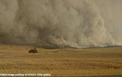 Image of smoke burning near a field.